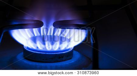 Burning Blue Gas On The Stove.  Blue Flames Of Gas Burning From A Kitchen Gas Stove . Copy Sapce .
