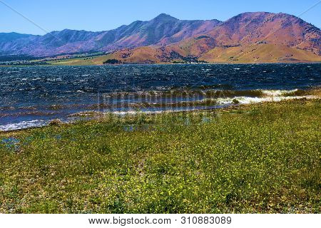Whitecaps And Waves Crashing Onshore To A Rural Beach With A Field Of Grasslands And Wildflowers Tak