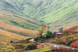 Irish Autumn Landscape