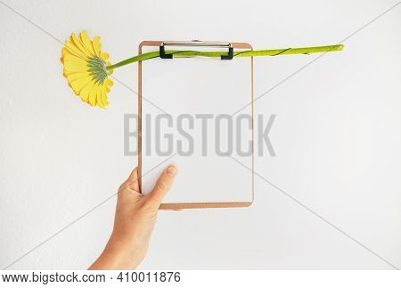 Female Hand Holding Clipboard With Empty Sheet And Yellow Flower On White Background. Spring Allergy