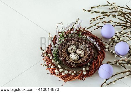 Nest With Partridge Eggs And Willow Twigs. Easter Composition With A Copy Of The Space