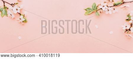 May Flowers. Spring Blossom And April Floral Nature On Pink Background. Beautiful Scene With Bloomin