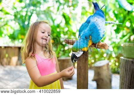 Kids Feeding Macaw Parrot. Child Playing With Bird