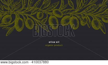 Olive Vintage Frieze. Vector Hand Drawn Pattern With Texture Branches, Green Fruit, Sketch Leaves. O