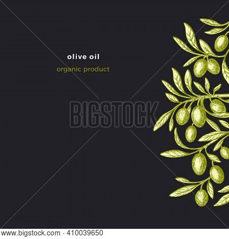 Olive Template. Vintage Pattern. Vector Hand Drawn Silhouette Of Plant, Botanical Fruit, Green Leaf.