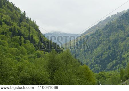 Landscape In The Arkhyz Biosphere Reserve, Russian Federation. Mountains Covered With Trees In The A