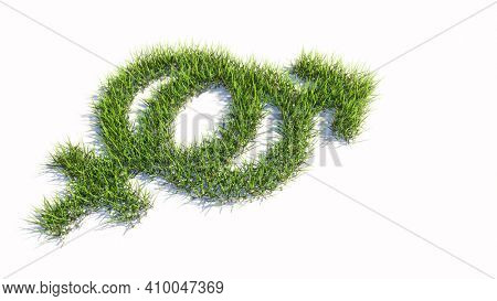 Concept or conceptual green summer lawn grass symbol shape isolated on white background, sign of gender signs. A 3d illustration metaphor for heterosexual relationships, couples, romance and family