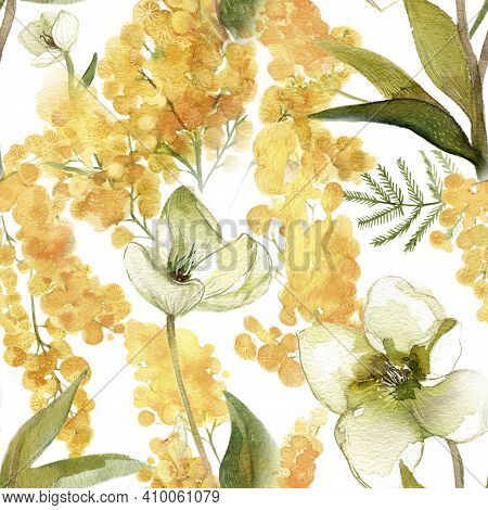 Mimosa And Hellebore Watercolor Pattern For Wallpapers And Textile Deisign. Spring Painted Flowers.