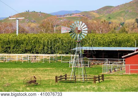 February 22, 2021 In Farmersville, Ca:  Orange Trees With A Rustic Windmill And Wind Machine In The