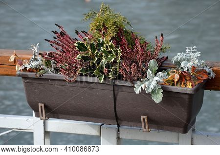 Seafront With Metal Railings And Plastic Boxes Attached To The Handrail. Filled With Dry Flower Deco