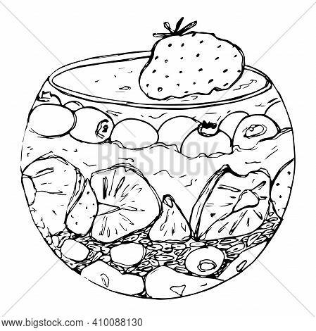 Vector Illustration Granola Parfait With Yogurt, Oat Granola, Fresh Berries, Honey And Nuts. Organic