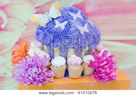 Beautiful Cupcakes Set