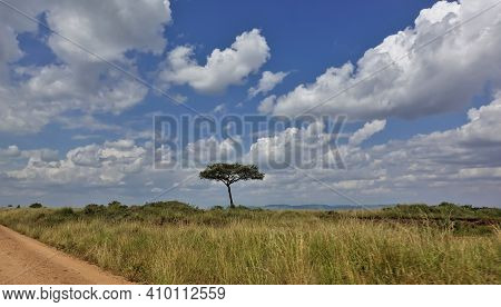 African Landscape. A Dirt Road Goes Through The Savannah, There Is Grass Around. Against The Backgro
