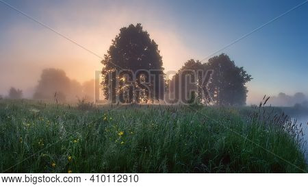 Summer Nature Landscape At Colorful Sunrise On River Shore. Trees In Mist On Grassy Meadow Near Rive