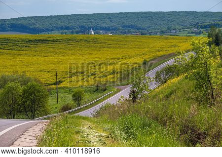 Road Through Spring Rapeseed Yellow Blooming Fields View. Natural Seasonal, Good Weather, Climate, E