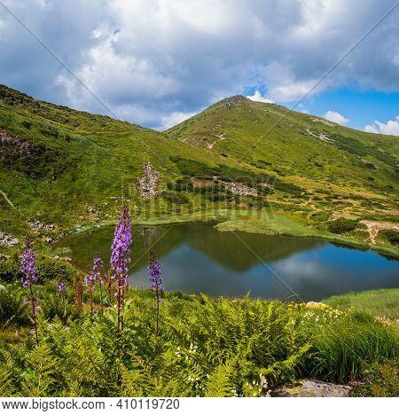 Summer Nesamovyte Lake Landscape, Chornohora Ridge, Carpathian Mountains, Ukraine.