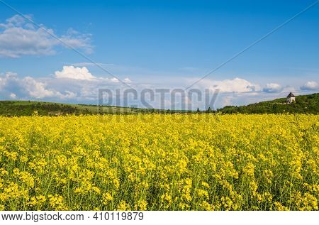 Spring Rapeseed Yellow Blooming Fields View, Blue Sky With Clouds In Sunlight. Pyatnychany Tower (de