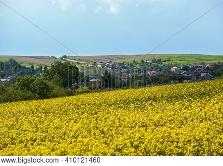 Road Through Spring Rapeseed Yellow Blooming Fields View, Sky With Clouds In Sunlight. Natural Seaso