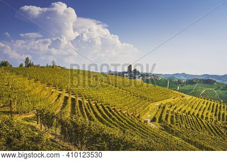 Langhe Vineyards Panorama, Serralunga D Alba, Unesco Site, Piedmont, Northern Italy Europe.