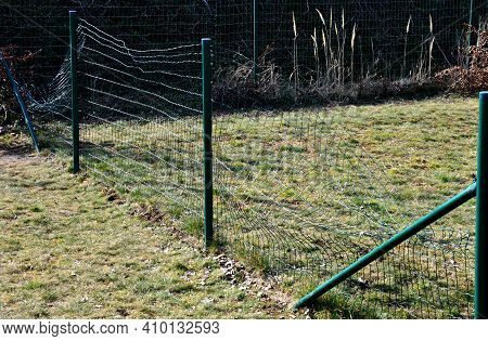 Damaged Wire Fence, Through Which Got Thief Or Curious Man, Child. Bent And Damaged Mesh On The Path