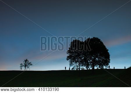 Tree On Mountain Againts Colorful Sky