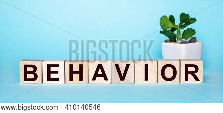 The Word Behavior Is Written On Wooden Cubes Near A Flower In A Pot On A Light Blue Background