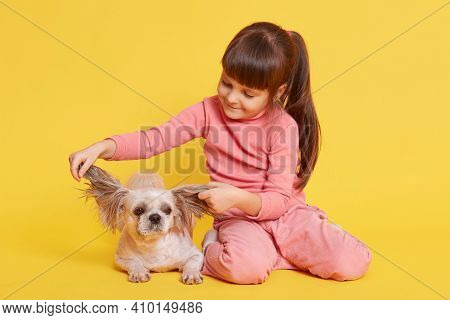 Happy Child With Dog Against Yellow Wall, Kid Pulling Pekingese Ears To Sides, Small Girl Looks At H