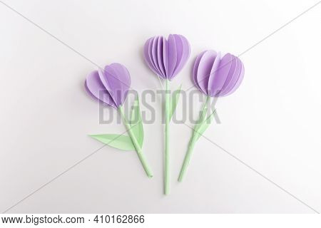 Diy Purple Paper Tulips Flowers, Diy, Spring Holiday Craft Activity For Kids