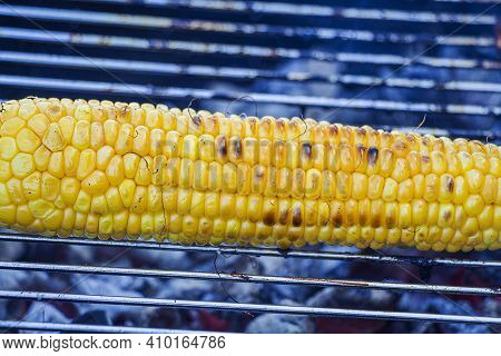 Process Cooking Fresh Yellow Corn Cobs On Barbecue Grill Outdoors. Picnic, Eating Outdoors. Metal Ba