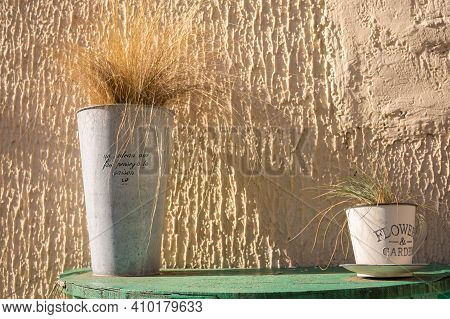 Dry Flowers On The Table. Iron Pot. Sunny Evening. Decor
