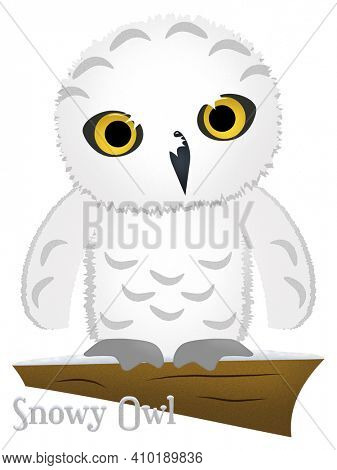 Snowy White Owl Illustration with Clipping Path Isolated on White BAckground