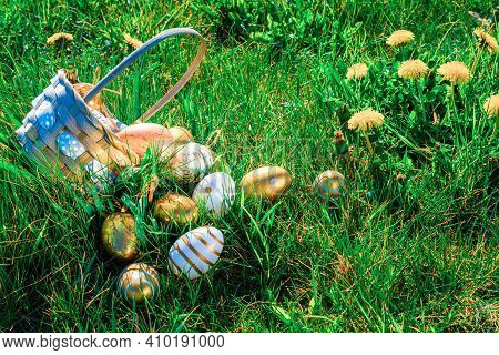 Easter Basket Eggs. Golden Egg With Yellow Spring Flowers In Celebration Basket On Green Grass Backg