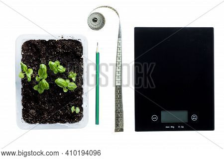 Weight Loss Concept. Healthy Food, Pencil, Herbs And Kitchen Scales On The Table Isolated On White.