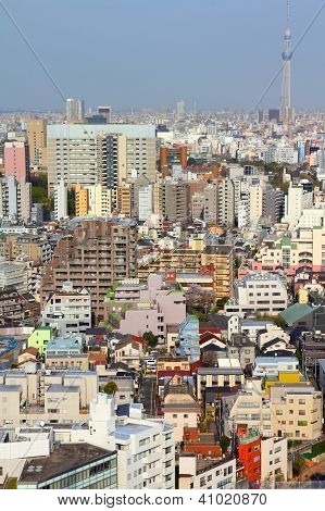 Tokyo Japan - aerial view of Bunkyo district. Modern city skyline. SkyTree tower visible. poster