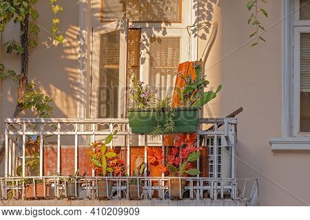 Small Vintage Balcony With Cactus Plants In An Old House, Lit By The Sun. Batumi, Georgia.