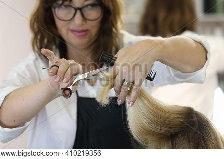 The Work Of A Hairdresser. Hairdresser Cut Hair Of A Woman In A Beauty Salon.