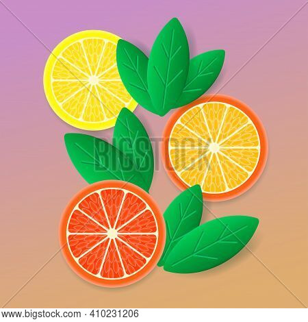 Round Slices Of Lemon, Orange And Grapefruit With Green Leaves. Fresh Fruit Set