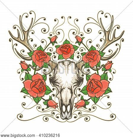 Hand Drawn Deer Or Antler Skull With Rose Flowers Isolated On White. Bohemian And Hipster Style Tatt