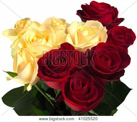 Beautiful Red And Yellow Roses