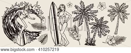 Summer Surfing Vintage Monochrome Concept With Beautiful Female Surfers In Bikini Surfboards Palm Tr