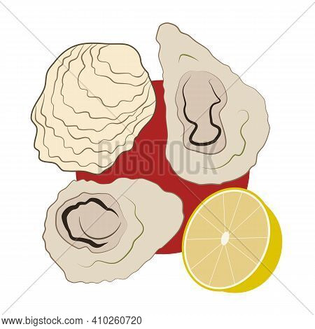 Oysters, Lemon And Red Wine Sauce. Hand-drawn Vector, Flat Style. Seafood, Healthy Food, Delicacies.