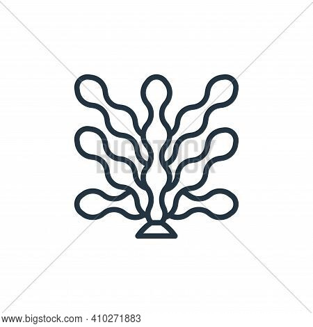 seaweed icon isolated on white background from seafood collection. seaweed icon thin line outline li