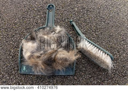 A Close Up View Of Chuns Of Hair In A Small Pan And Brush Outside On The Tarred Road
