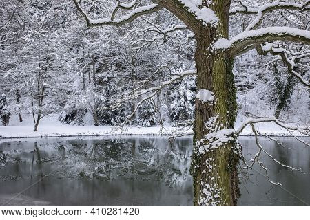 Winter landscape, winter forest trees covered with frost and snow, frozen lake in the winter forest.