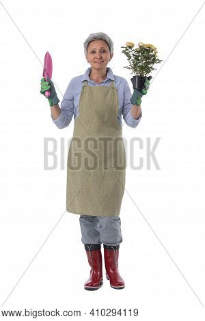 Gardening. Mature Woman Gardener Worker With Flowers In Pot And Scoop Isolated On White Background,