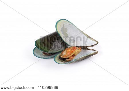 Mussels Isolated On A White Background Mussels