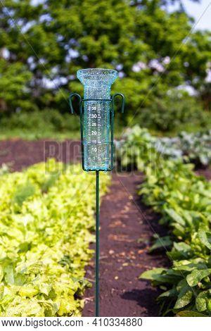 Meteorology With Rain Gauge In Garden After The Rain