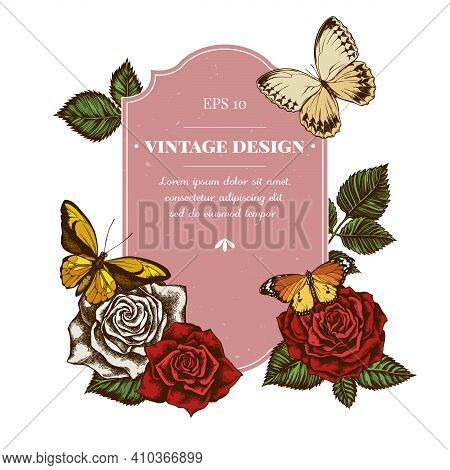 Badge Design With Colored Wallace S Golden Birdwing, Jungle Queens, Plain Tiger, Roses Stock Illustr
