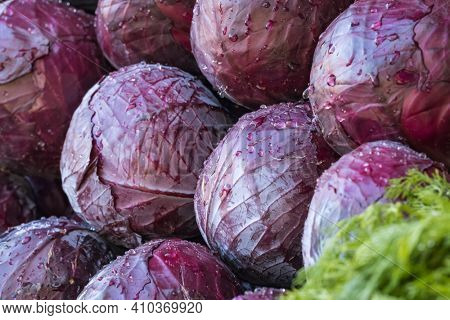 Red cabbage close-up on the farmers market