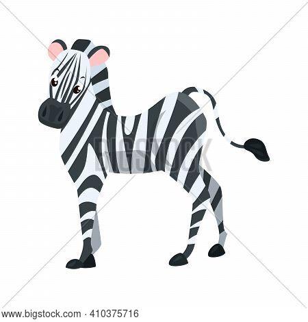 Zebra Flat Icon. Colored Vector Element From Animals Collection. Creative Zebra Icon For Web Design,